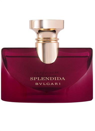 Bvlgari Splendida Magnolia Sensuel EDP 100 ml Kadın Parfüm Renksiz